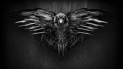Raven Background Dark Ravens Wallpapers Baltimore Thrones