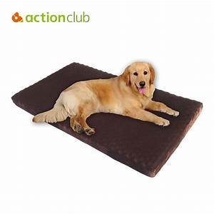 memory foam beds for dogs dog beds gallery images and With cheap memory foam dog beds