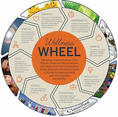 Wellness Wheel Health Unh Types Plan Wheels