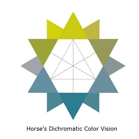 what colors do horses see the it david ramey dvmdavid ramey dvm