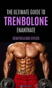Safe  U0026 Legal Trenbolone Alternative For Sale  Trenorol Review In 2020