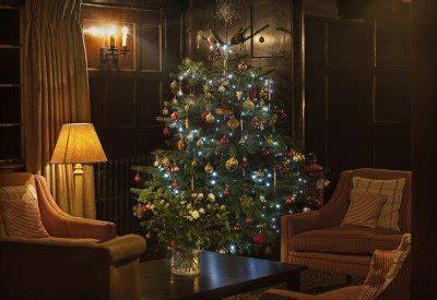 christmas tree  longer caring