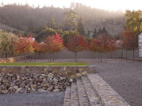 andrea cochran landscape drystonegarden 187 blog archive 187 andrea cochran