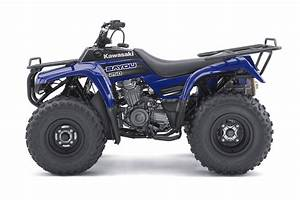 Kawasaki Bayou 250 - 2010  2011