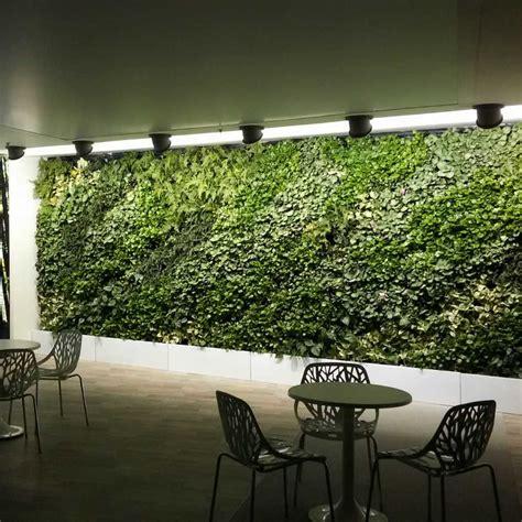 Vertical Gardening Indoors by Lemon Modular Vertical Garden South Africa Vertical