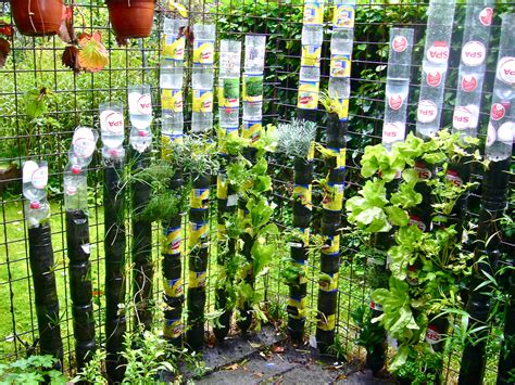 Can Food Crops Be Grown Safely In Plastic Containers