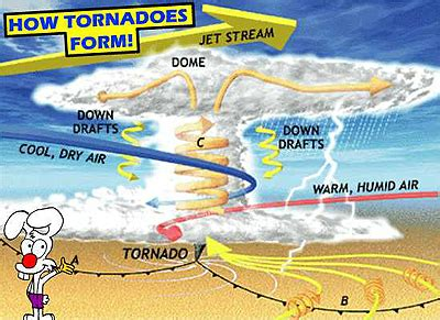 where do tornadoes usually form tornado facts for kids and students tornadofacts net