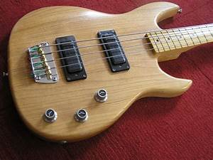 Tone Warrior  Peavey Foundation Bass