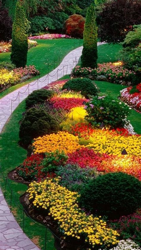 butchart gardens bc canada flowers for my