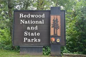 Redwood national park map - ThingLink