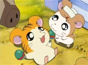 Hamtaro images A bunch of cuties wallpaper and background ...