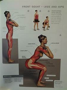 87 Best Anatomical Workout Chart Images On Pinterest