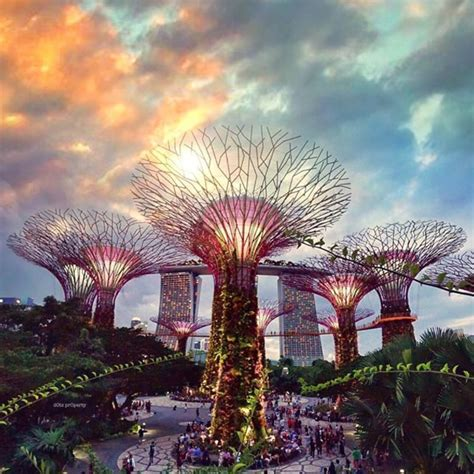 gardens by the bay physical garden by the bay tickets entertainment