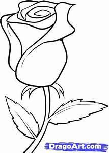Cómo dibujar una rosa  Taringa!