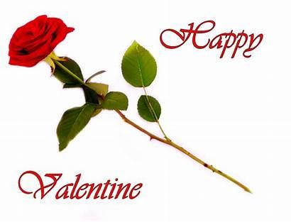 Valentine Roses Clipart Valentines Happy Rose Flower