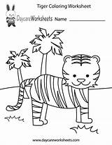 Preschool Worksheets Worksheet Coloring Printable Tiger Colouring Preschoolers Pages Activity Tigers Activities Nursery Daycareworksheets Printables Toddler Drawings Daycare Drawing Lion sketch template