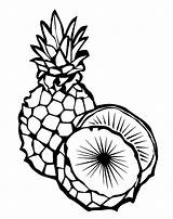 Pineapple Coloring sketch template