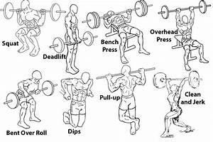 Beginner U0026 39 S Fitness Guide