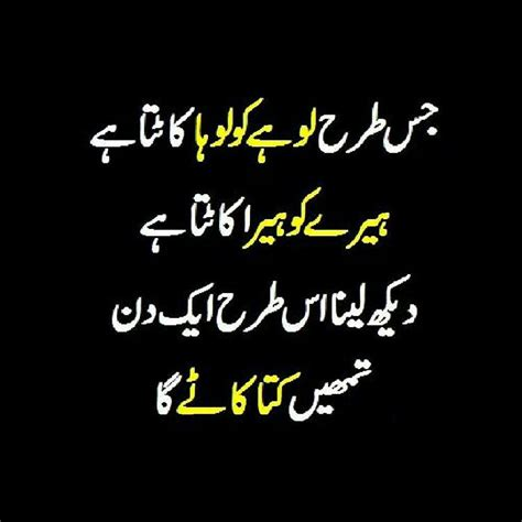 funny quotes  urdu articles crayon