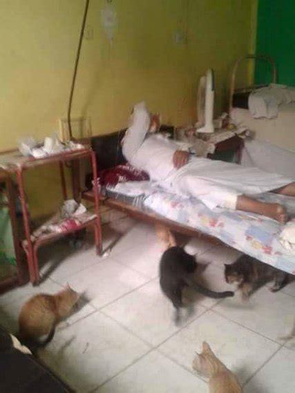 egyptian doctors shame government  facebook images