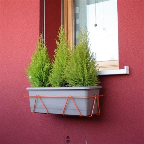 piante da davanzale portavasi per finestre 60cm arancio massima adattabilit 224