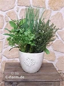 Kräuter Pflanzen Topf : k nstliche kr uter kr uter im topf ~ Lizthompson.info Haus und Dekorationen
