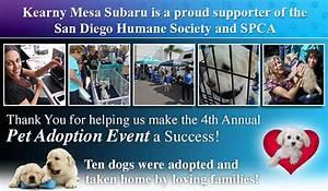 4th annual kearny mesa subaru pet adoption event