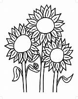 Sunflower Coloring Pages Drawing Printable Colouring Template Colorings Adults Getdrawings Sunflowers Approved Amazing Getcolorings Fair County Seeds sketch template