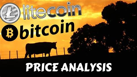 The winklevosses are major, vocal investors in bitcoin and bitcoin news youtube. LITECOIN BITCOIN PRICE ANALYSIS, litecoin news, bitcoin news, ltc, btc - YouTube