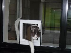 dog door sliding glass door patio door dog door doggie With should i get a dog door