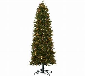 Qvc Halloween Lights Bethlehem Lights 7 5 39 Canterbury Slim Christmas Tree