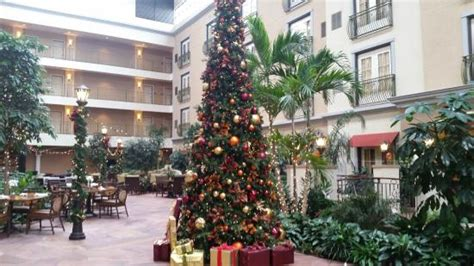 denver christmas trees christmas tree picture of woolley s classic suites 3074