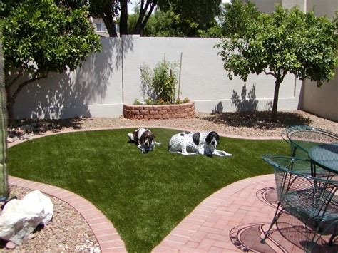 alternatives to grass in backyard 17 ideas about grass alternative on succulent 7429