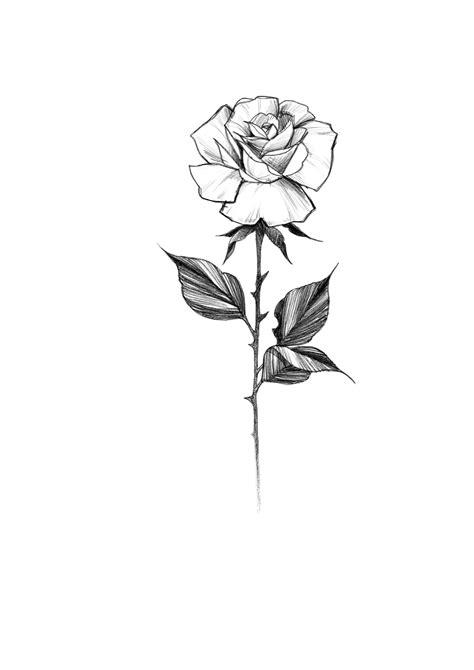 Pin by Kiley Moore on Art | Pinterest | Primer tatuaje, Tatuajes and Arte del tatuaje