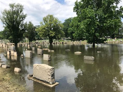 baltimores historic loudon park cemetery affected