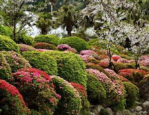 Choosing Landscaping Plants  A Guide
