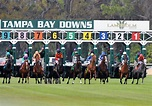 Horse Racing | Poker | Dining | Group Events | Golf