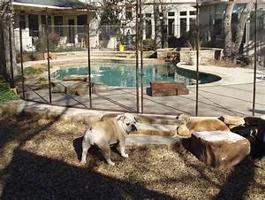Cheap easy dog fence with 3 popular dog fence options for Dog fence for sale cheap