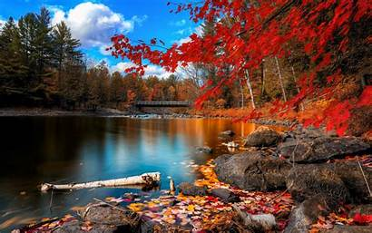Fall Wallpapers Foliage Autumn Nature Colors Background