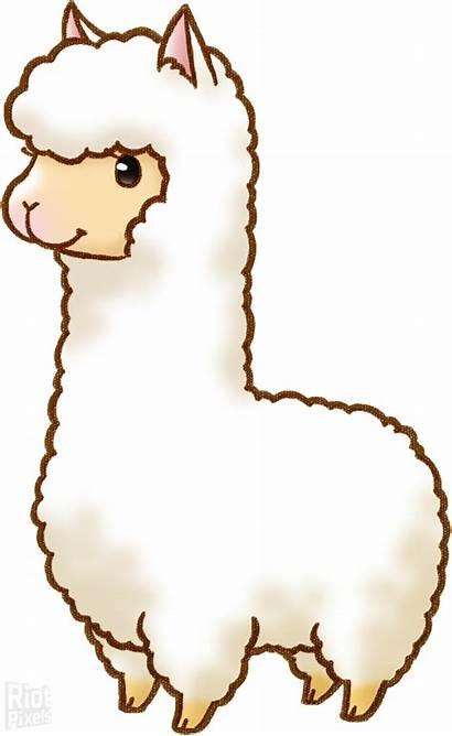 Llama Alpaca Cartoon Clip Clipart Drawing Transparent