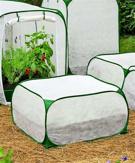 palram greenhouse protection fabrics tips to protect plants and trees