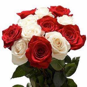 Globalrose 50 Stems of Roses 25 Red and 25 White-50-roses ...