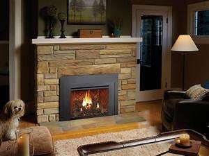 Fireplace Xtrordinair - 430 Gsr Gas Fireplace Insert