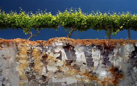 Land Evaluations | Vineyard Soil Technologies