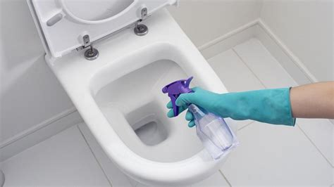 Best Toilet Bowl Cleaner Reviews  2018 Reviewed And Top Picks
