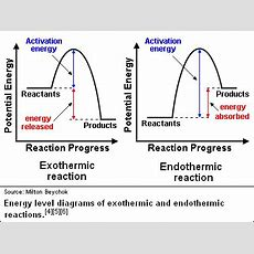 What Is Difference Between Endothermic And Exothermic Reaction If Both Require Activation Energy