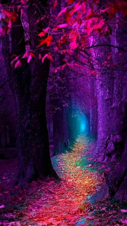 Nature Fall Zedge Colorful Landscape Landscapes Georgekev