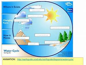 Ppt - The Carbon  Oxygen  U0026 Nitrogen Cycles Powerpoint Presentation