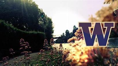 Huskies Uw Washington University