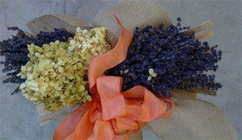 fiori secchi ortensie come conservare le ortensie recise